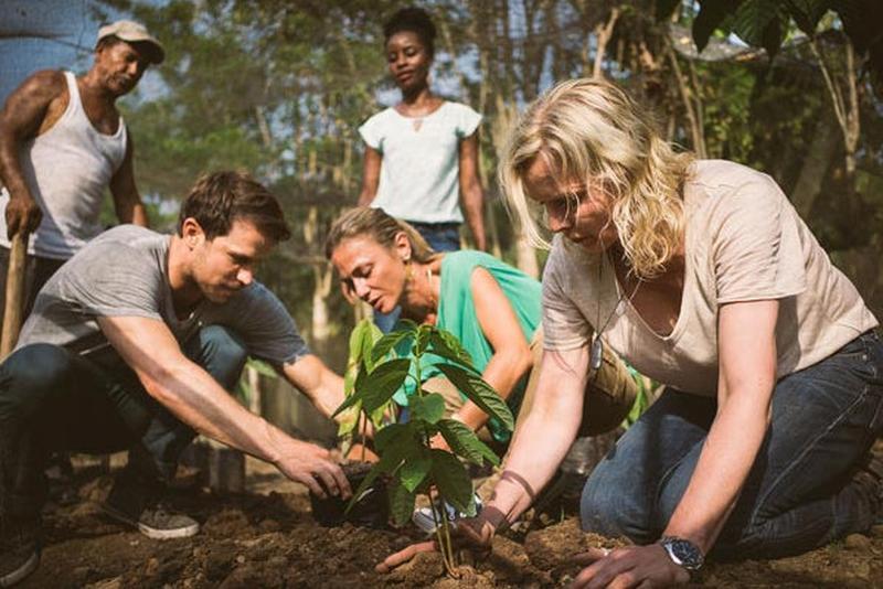 Plantando Arboles de Cacao