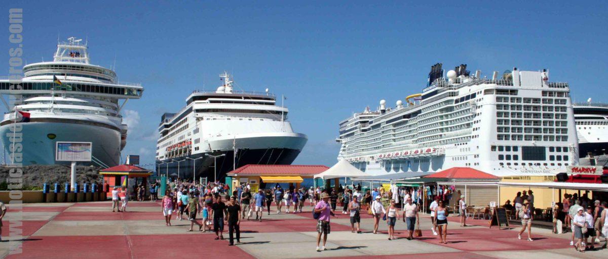 Cruceros y Cruceristas
