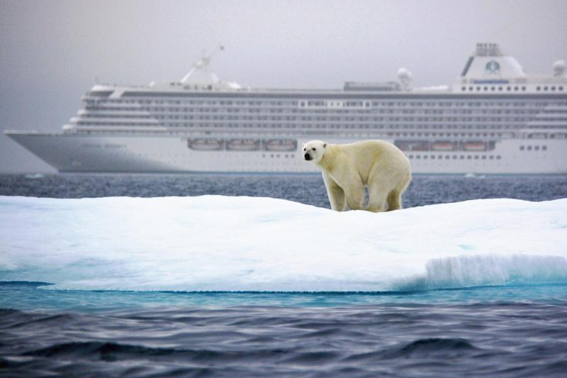 Polar-Bear_Victoria-Strait_Northwest-Passage